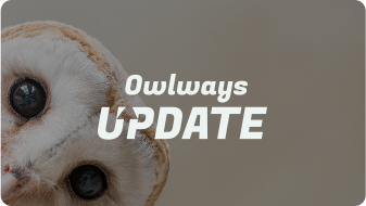 Owlways Update補助